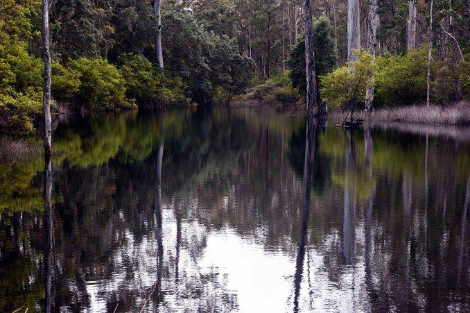 Donnelly Lake_449_print